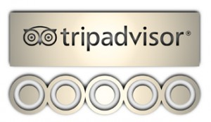 Custom private tours by Your Thai Guide on Trip Advisor